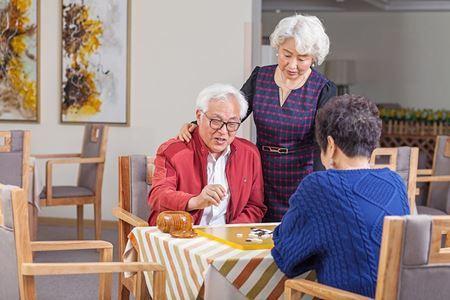 分类图片 如何看待把父母送养老院就是不孝?